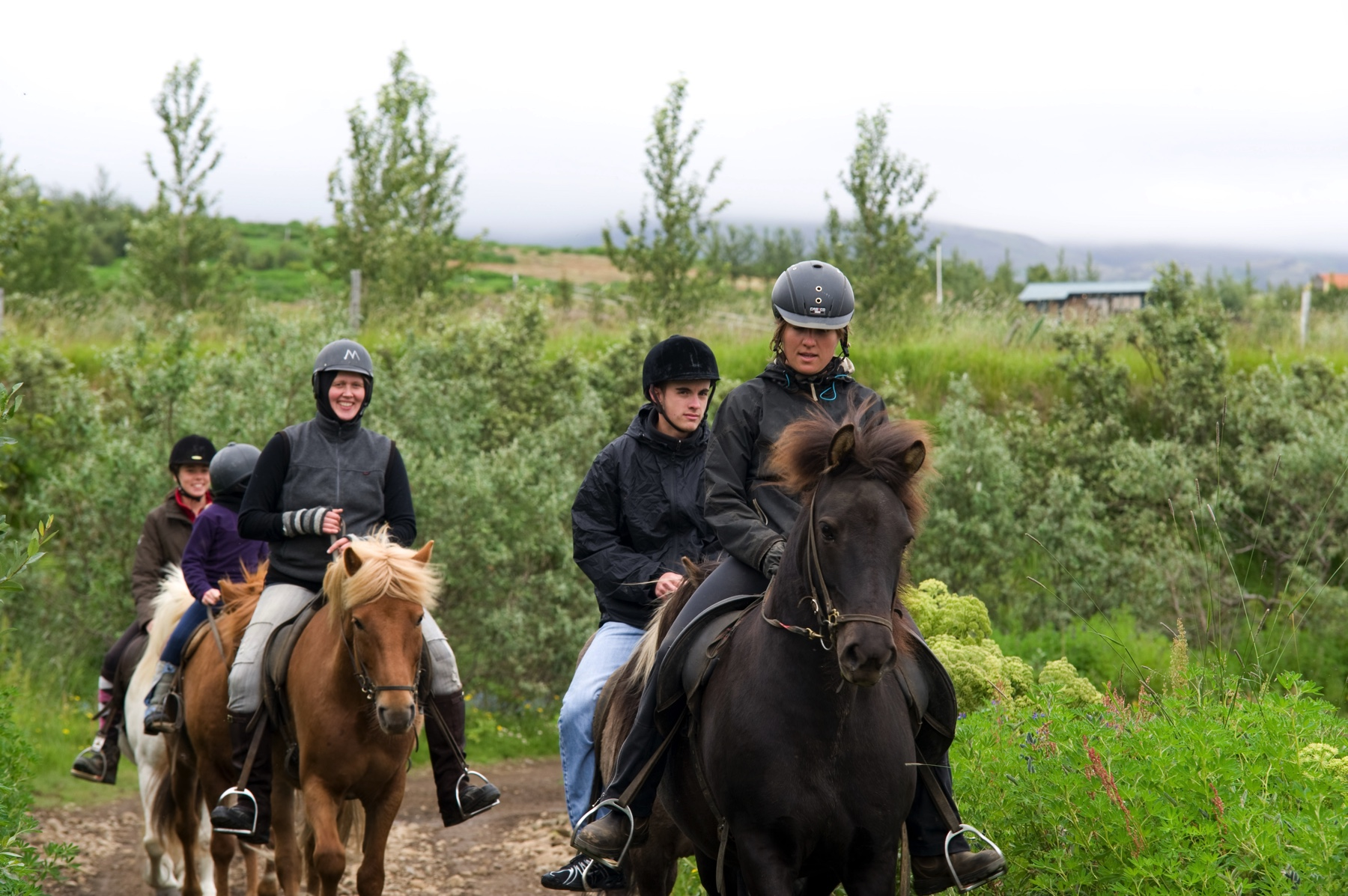 horseback riding tour Iceland laxness