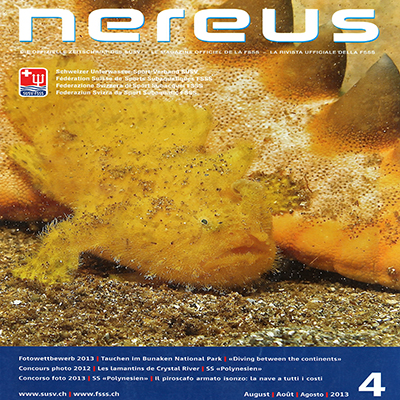 nereus-between-the-continents-issue-4-august-2013-logo