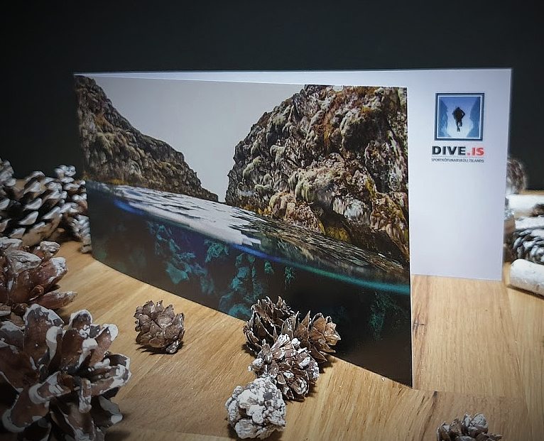 dive-gift-card-small.png