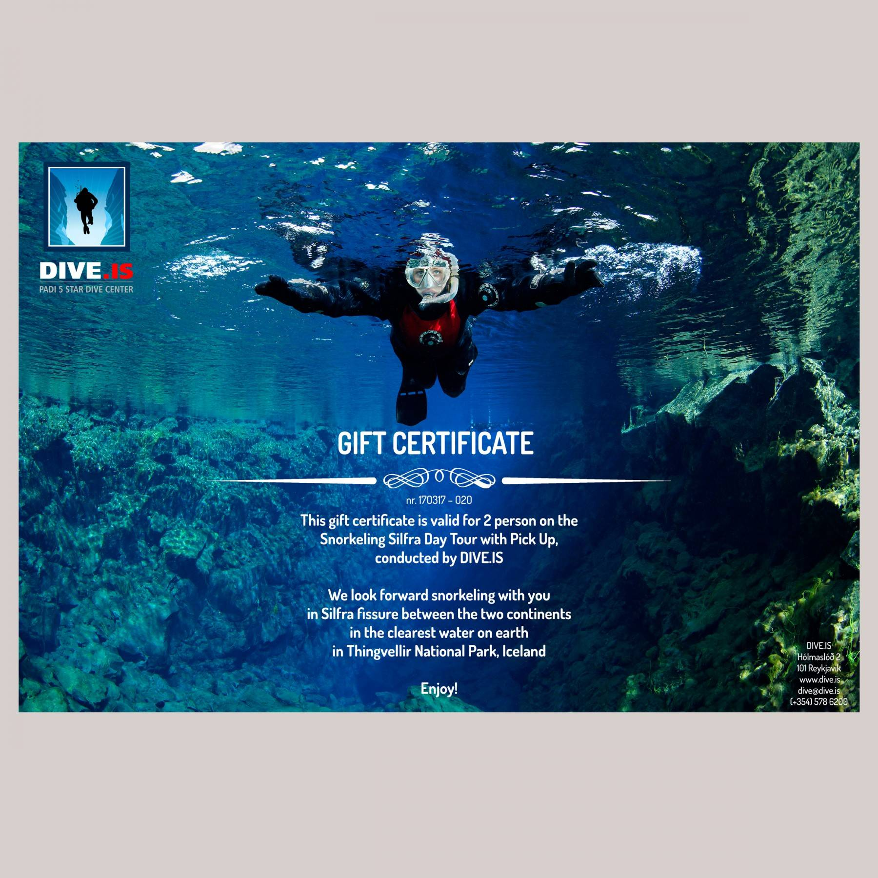DIVE.IS Gift Certificate