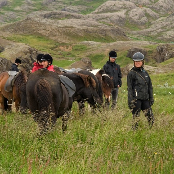 horses-and-riders-in-the-grass-by-diveis-720x720.jpg
